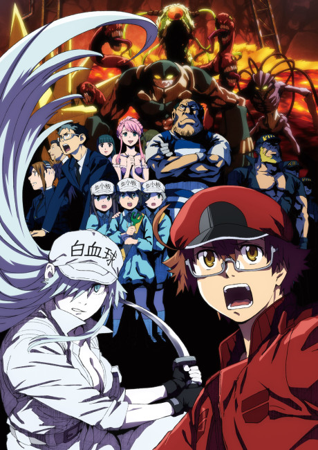 Hataraku Saibou Black Tv
